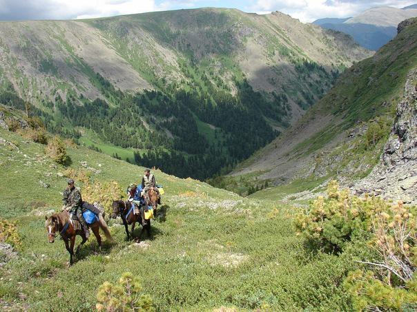 Чатыр-Даг, конные прогулки, цены Алушта